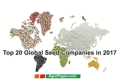 Top 20 Global Seed Companies in 2017 based on sales - Access to seeds